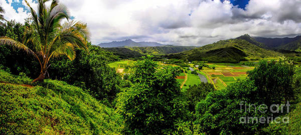 Photograph - Hanalei Valley by Richard Lynch