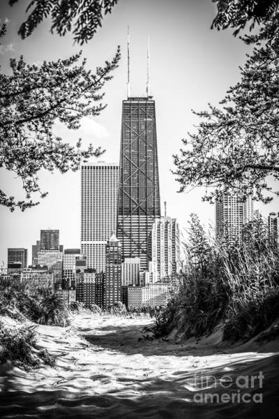 Hancock Building Through Trees Black And White Photo Art Print by Paul Velgos