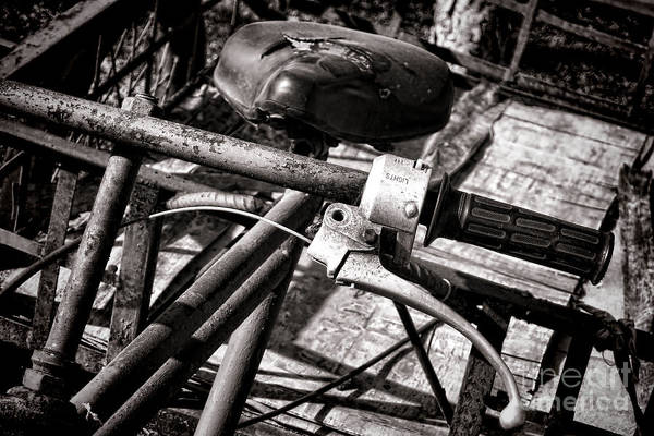 Photograph - Handlebar by Olivier Le Queinec