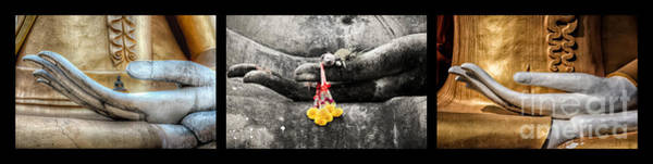 Triptych Wall Art - Photograph - Hands Of Buddha by Adrian Evans