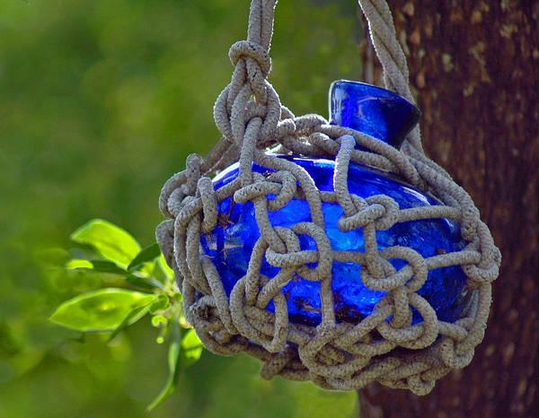 Photograph - Hanging Blue Bottle Garden Art by Ginger Wakem