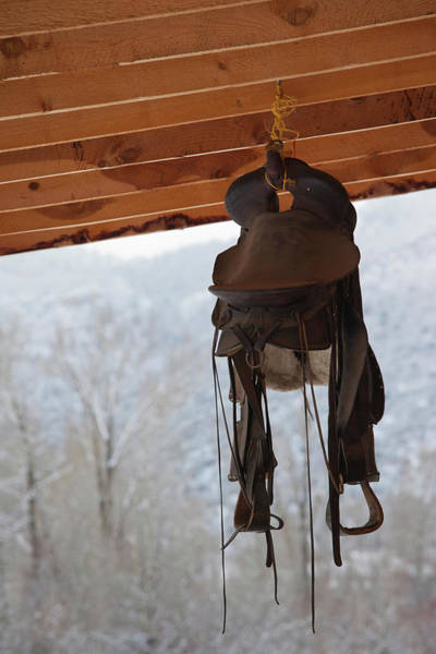 Ridgway Photograph - Hanging Horse Saddle, Ridgway by Panoramic Images