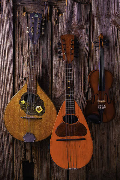 Hand Made Wall Art - Photograph - Hanging Instruments by Garry Gay
