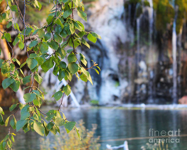 Art Print featuring the photograph Hanging Lake 8x10 Crop by Kate Avery
