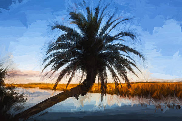 Ormond Photograph - Leaning Palm Tree Loop Road Painted  by Rich Franco