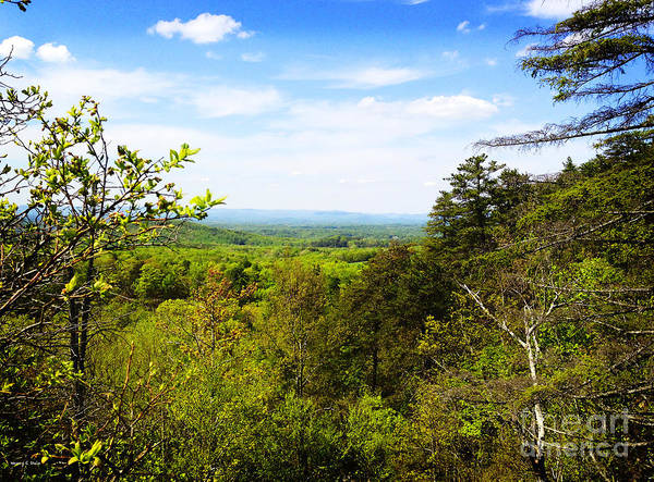 Nc State Wall Art - Photograph - Hanging Rock Vista by Nancy Stein