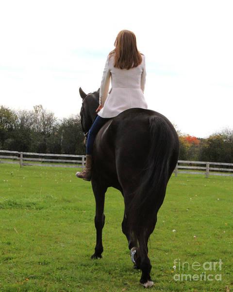 Photograph - Hannah Sunday 24 by Life With Horses