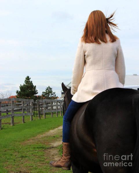 Photograph - Hannah Sunday 28 by Life With Horses
