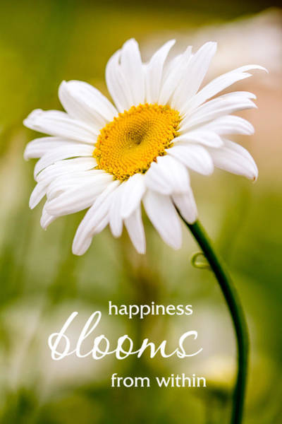 Photograph - Happiness Blooms From Within by Teri Virbickis