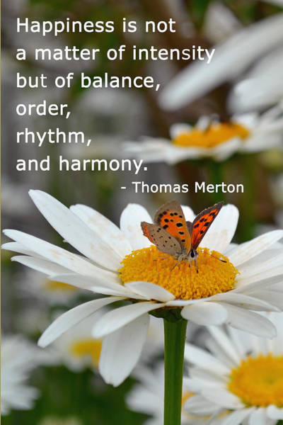 Happiness Is Balance Art Print