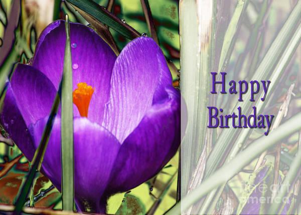 Photograph - Happy Birthday  by Belinda Greb