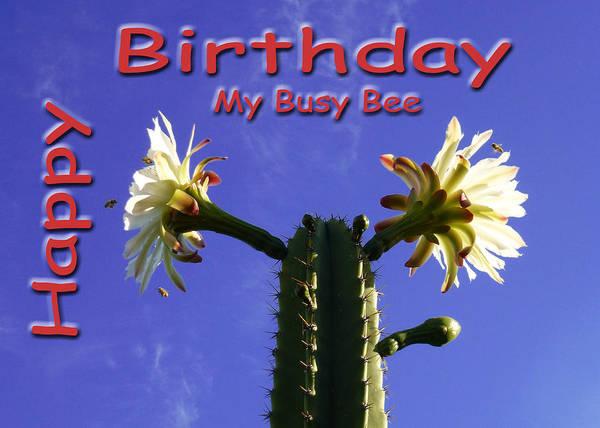 Photograph - Happy Birthday Card And Print 4 by Mariusz Kula