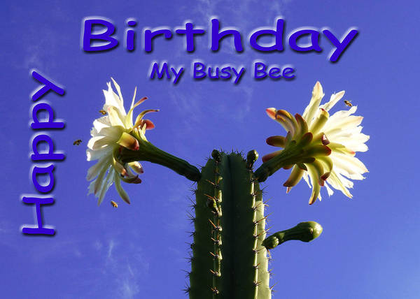 Photograph - Happy Birthday Card And Print 5 by Mariusz Kula