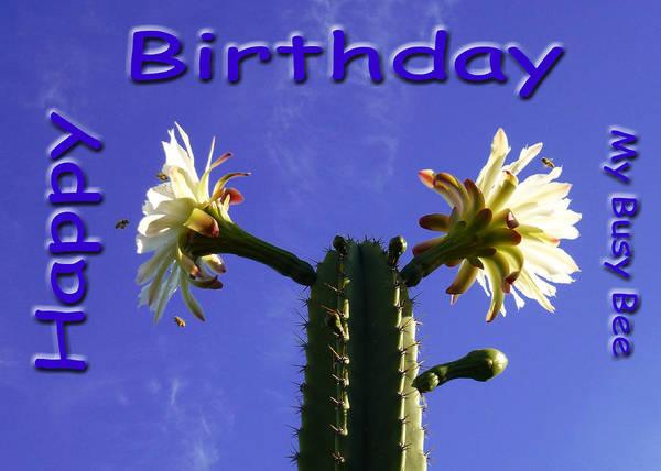 Photograph - Happy Birthday Card And Print 6 by Mariusz Kula