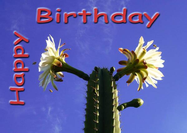 Photograph - Happy Birthday Card And Print 8 by Mariusz Kula