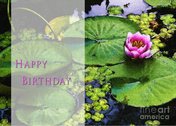 Photograph - Happy Birthday Water Lily by Belinda Greb