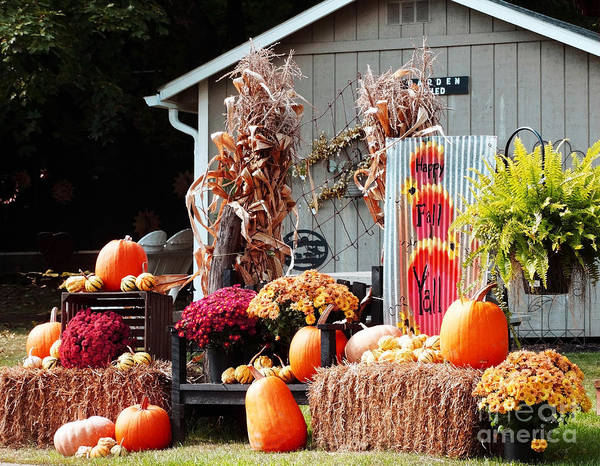 Photograph - Happy Fall by Gena Weiser
