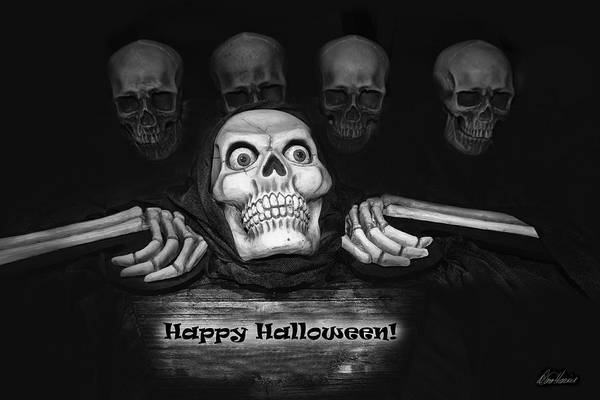 Photograph - Happy Halloween Skeletons by Diana Haronis