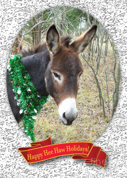 Photograph - Happy Hee Haw Holidays by Cheryl McClure