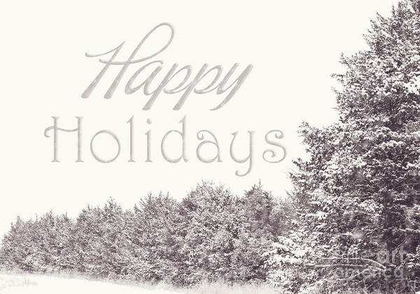 Photograph - Happy Holidays by Pam  Holdsworth