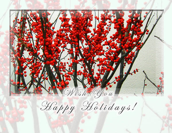 Photograph - Happy Holidays by Xueling Zou