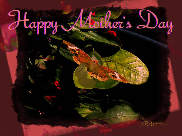 Photograph - Happy Mother's Day 07 - Featured In Cards For All Occasions by Ericamaxine Price