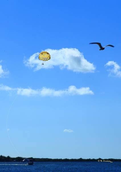 Photograph - Happy Parasailing by R B Harper