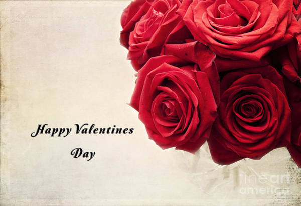 Photograph - Happy Valentines Day by Pam  Holdsworth
