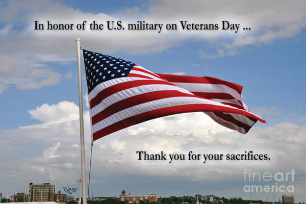 Photograph - Happy Veterans Day by Cheryl McClure