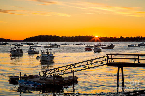 Photograph - Harbor Glow by Susan Cole Kelly