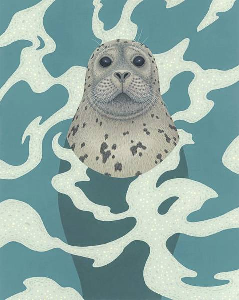 Wall Art - Painting - Harbor Seal by Nathan Marcy