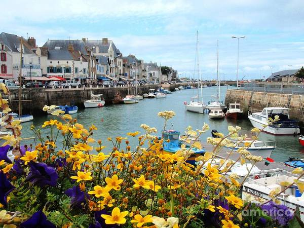 Photograph - Harbour In Brittany - France by Cristina Stefan