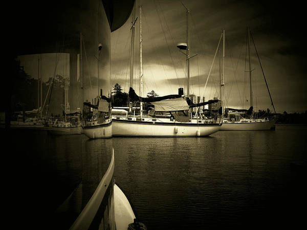 Photograph - Harbour Life by Micki Findlay