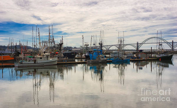 Photograph - Harbour Reflections by Carrie Cole