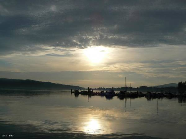 Photograph - Harbour Sunset by Barbara St Jean