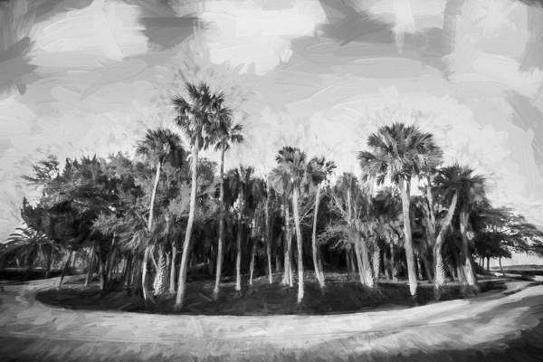 Ormond Photograph - Hard Right On Loop Road Painted Bw by Rich Franco
