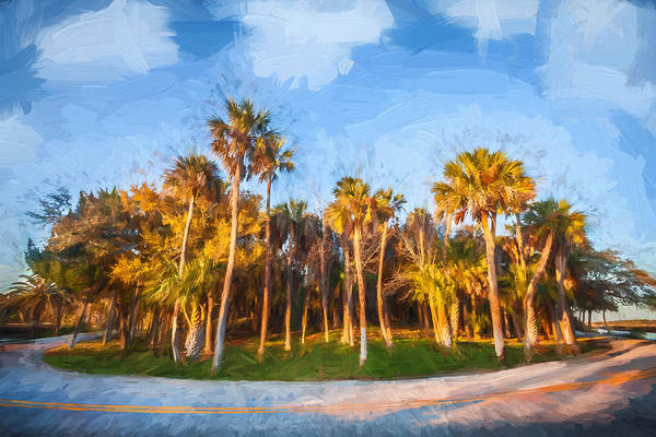 Ormond Photograph - Hard Right On Loop Road Painted  by Rich Franco