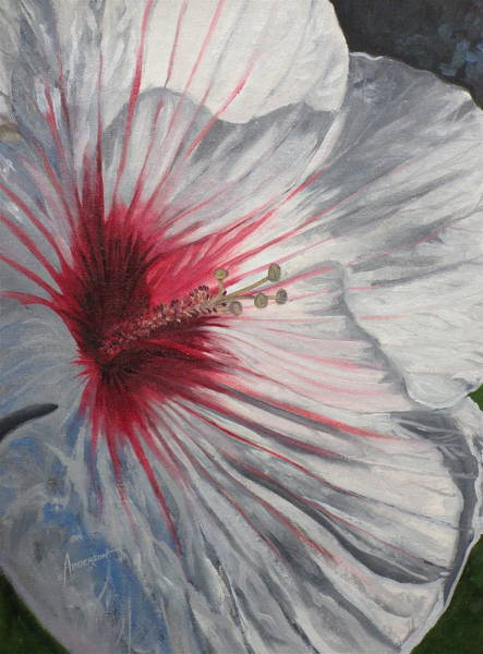 Painting - Hardy Hibiscus by Sherri Anderson