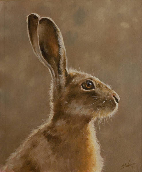 Rabbit Painting - Hare Portrait I by John Silver