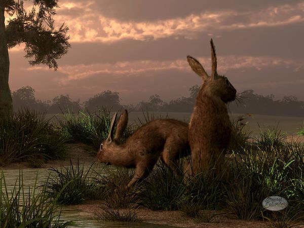 Haring Digital Art - Hares In The Wetlands by Daniel Eskridge