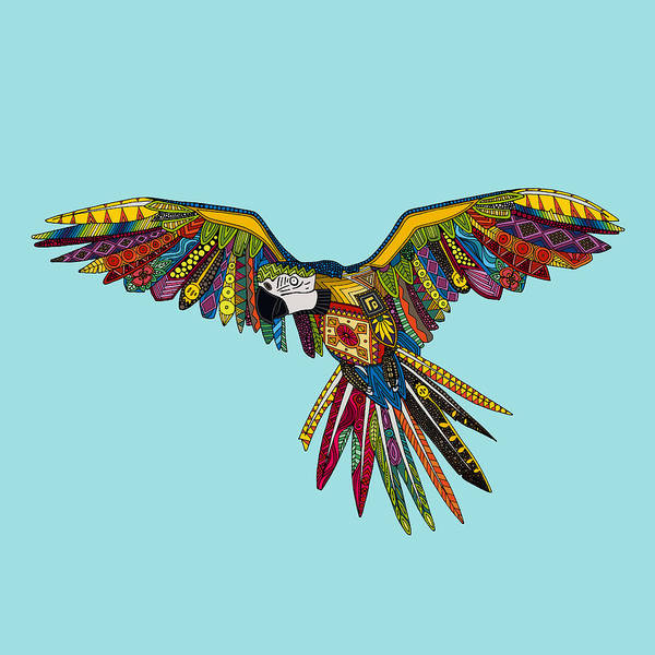 Flight Drawing - Harlequin Parrot by MGL Meiklejohn Graphics Licensing