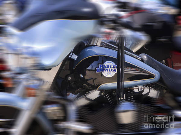 Wall Art - Photograph - Harley by Cecil Fuselier