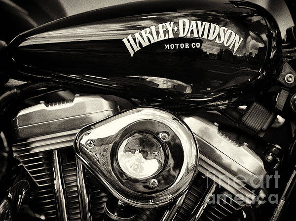Co Photograph - Harley D Sepia by Tim Gainey