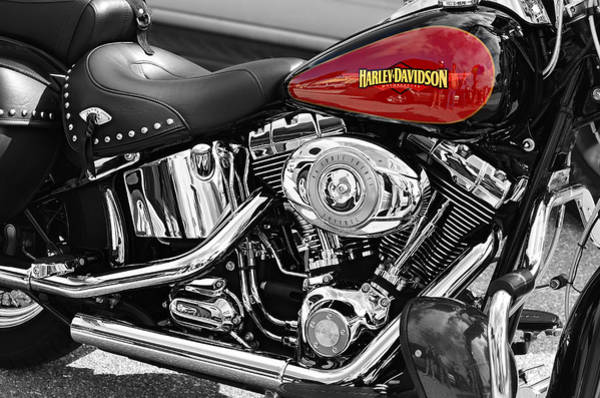 Harley Davidson Black And White Wall Art - Photograph - Harley Davidson by Laura Fasulo