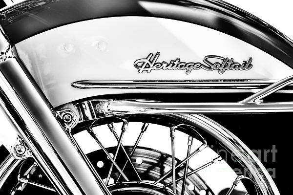 Harley Davidson Black And White Wall Art - Photograph - Harley Heritage Softail Monochrome by Tim Gainey