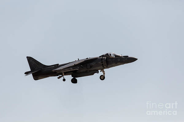 Av-8 Photograph - Harrier Landing Config by John Daly