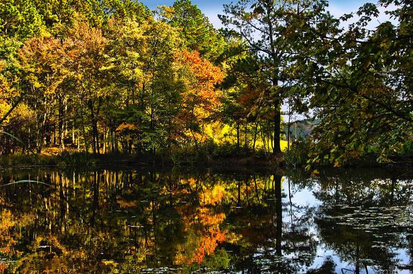 North Carolina Wall Art - Photograph - Harris Lake Nc by Frank Savarese