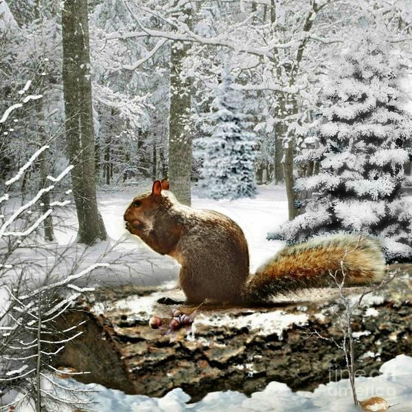 Mixed Media - Harry In Winter 2 by Morag Bates
