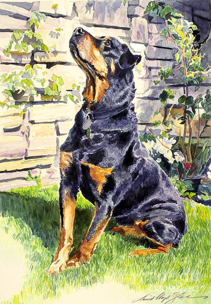 Doberman Wall Art - Painting - Harry The Doberman by David Lloyd Glover