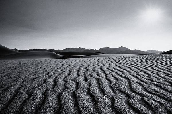 Photograph - Desert Lines by Gene Garnace